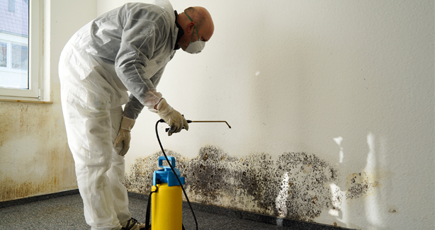 Licensure for Mold Professionals