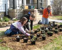 Photo of people planting potted plants
