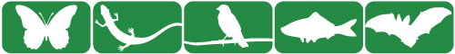 Wildlife Action Plan Icons