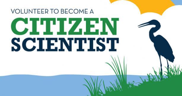 Become a Citizen Scientist